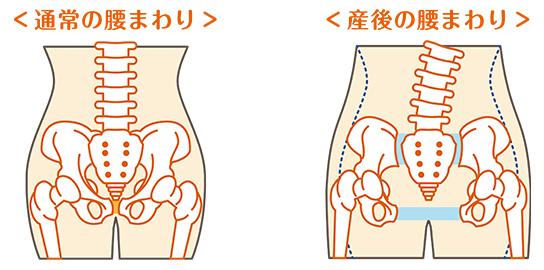 「産後骨盤 イラスト」の画像検索結果