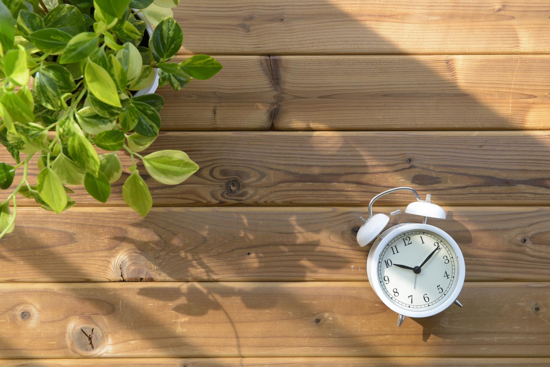 ダイエットのための運動は時間帯が重要です